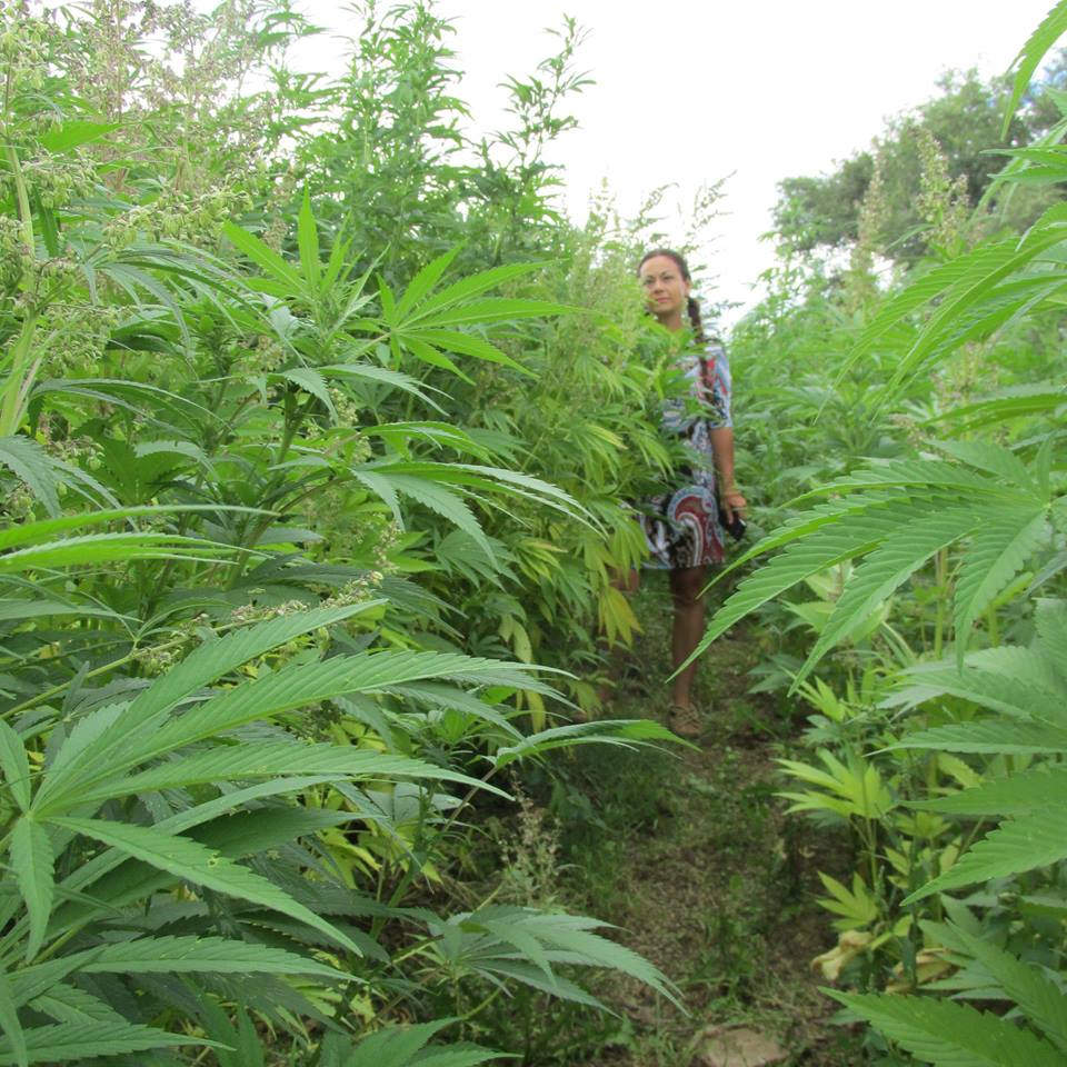 Veronica Carpio - First Female Hemp Farmer