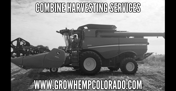 Hemp Combine Harvesting Services
